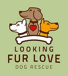 Looking Fur Love Dog Rescue Logo